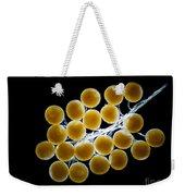 Velvet Crab Egg Cluster, Lm Weekender Tote Bag