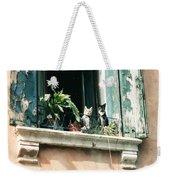 Venetian Cats Weekender Tote Bag