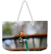 Vermilion Flycatcher Two Weekender Tote Bag