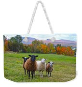 Vermont Sheep In Autumn Weekender Tote Bag