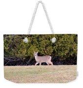 Vermont White-tailed Deer  Weekender Tote Bag