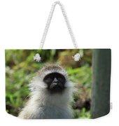 Vervet Monkey Weekender Tote Bag