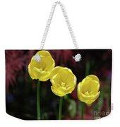 Very Blooming And Flowering Trio Of Yellow Tulips Weekender Tote Bag