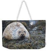Very Chubby Harbor Seal Weekender Tote Bag