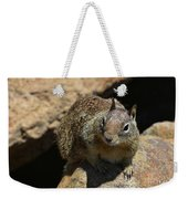 Very Cute Face Of A Wild Squirrel In California Weekender Tote Bag