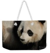Very Fluffy Furry Face Of A Giant Panda Weekender Tote Bag