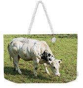 Very Muscled Cow In Green Field Weekender Tote Bag