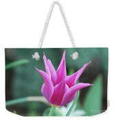 Very Pretty Blooming Pink Spikey Tulip Flower Blossom Weekender Tote Bag
