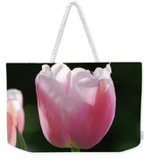 Very Pretty Pale Pink Tulip Blossom In Spring Weekender Tote Bag