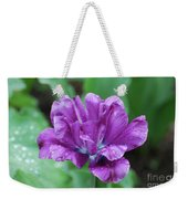 Very Pretty Purple Tulip With Dew Drops On The Petals Weekender Tote Bag