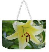 Very Pretty Single Blooming Yellow Daylily Flower Weekender Tote Bag