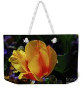 Very Pretty Yellow And Red Tulip Flower Blossom Weekender Tote Bag