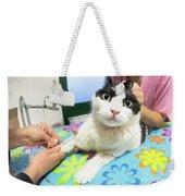 Veterinarian Cat Care Weekender Tote Bag