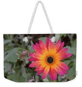 Vibrant African Daisy Weekender Tote Bag