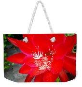 Vibrant Cacti Weekender Tote Bag