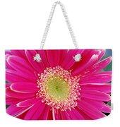 Vibrant Pink Gerber Daisy Weekender Tote Bag