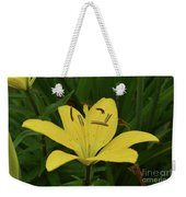 Vibrant Yellow Lily Thriving In The Spring Weekender Tote Bag
