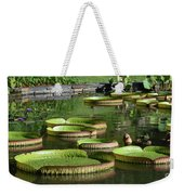 Victoria Amazonica Giant Lily Pads  Weekender Tote Bag