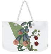 Victorian Botanical Illustration Of Foxglove And Common Raspberry Weekender Tote Bag