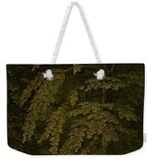 View In A Forest  Outer Right Wing Of A Triptych  Gerard David  C  1505   C  1515 Weekender Tote Bag