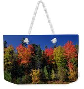 View In The Appalachian Mountains Weekender Tote Bag