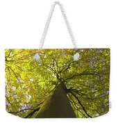 View To The Top Of Beech Tree Weekender Tote Bag