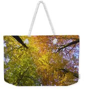 View To The Top Of Beech Trees Weekender Tote Bag