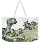 Vilsec Fountain Weekender Tote Bag