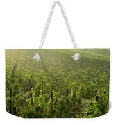 Vineyards Shrouded In Fog Weekender Tote Bag