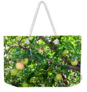 Vintage Tractor In Apple Orchard Weekender Tote Bag by Will Borden