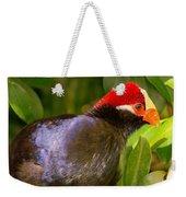 Violet Plantain Eater Weekender Tote Bag