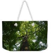 Virgin Canopy Weekender Tote Bag