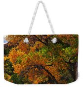 Virgin River Triptych Right Panel Weekender Tote Bag