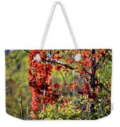 Virginia Creeper Weekender Tote Bag