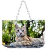 Volterra Italy Cat Watercolor Weekender Tote Bag