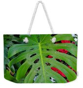 Waikiki Split Leaf Weekender Tote Bag