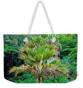 Waimea Palm Study 2 Weekender Tote Bag