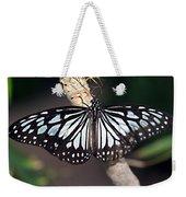 Waiting --- Rice Paper Butterfly Weekender Tote Bag