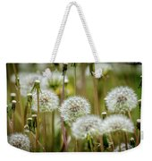 Waiting For A Spring Breeze Weekender Tote Bag