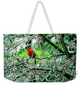 Waiting For The Thaw Weekender Tote Bag