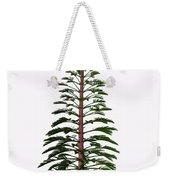 Walchia Tree Weekender Tote Bag