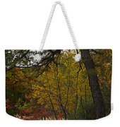 Walden Pond Path Into The Forest 2 Weekender Tote Bag
