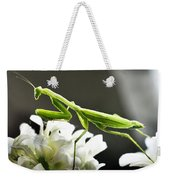 Walkin Tall On Silk Weekender Tote Bag