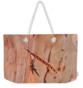 Walking Stick And Pheasant Feather Weekender Tote Bag