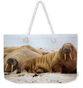 Walrus Family Weekender Tote Bag