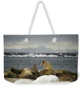 Walruses With Giant Tusks At Arctic Haul-out Weekender Tote Bag