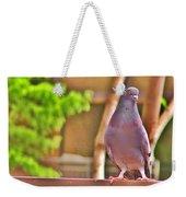 Walter Pigeon Weekender Tote Bag