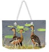 Wandering Whistling Ducks Weekender Tote Bag