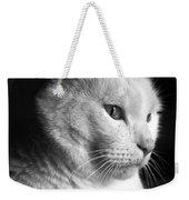 Watchful Weekender Tote Bag by Bob Orsillo