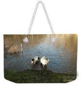 Water Dogs Weekender Tote Bag